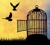 200x178-birdcage